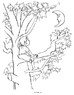 Moon coloring page--tree